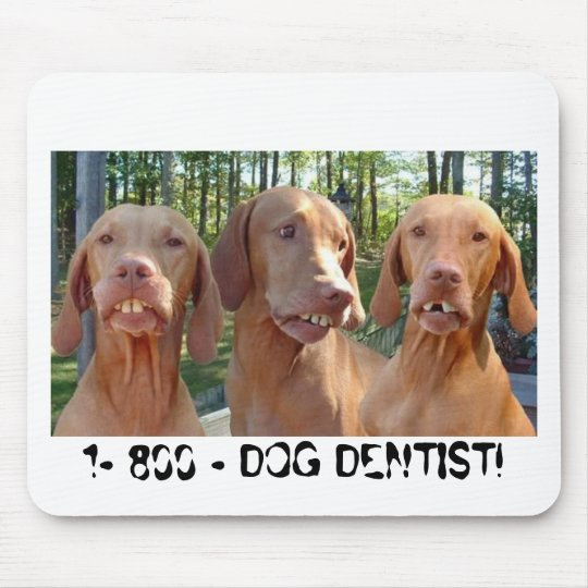 DOGS WITH BUCK TEETH 1-800-DOG DENTIST MOUSEPAD