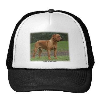Dogue de Bordeaux 9Y201D-159 Mesh Hats