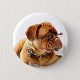 dogue de bordeaux dog wearing glasses 6 cm round badge
