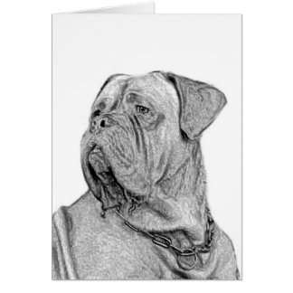 Dogue de Bordeaux greeting card