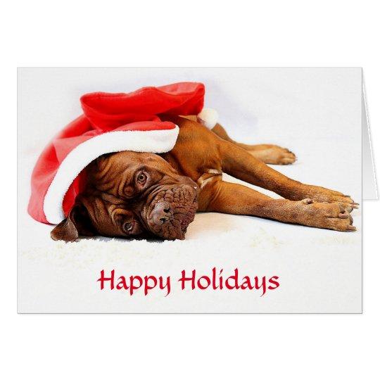Dogue de Bordeaux Happy Holidays Card