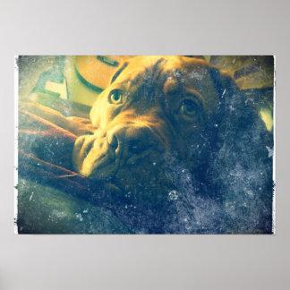 Dogue de Bordeaux vintage inspired poster