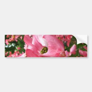 Dogwood Blossom Bumper Sticker