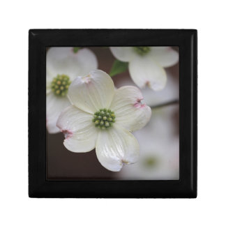 Dogwood Blossoms Gift Box