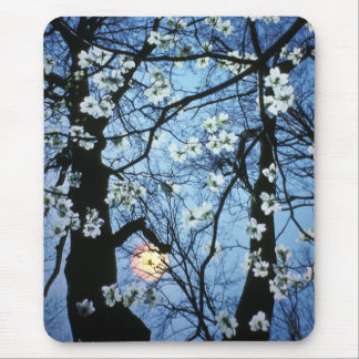 Dogwood blossoms with sunset mouse mat