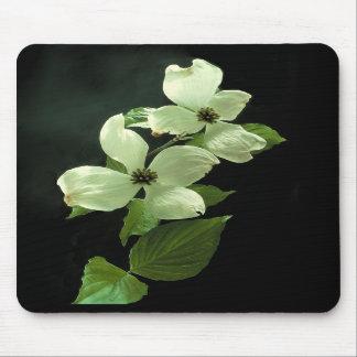Dogwood Blossum Mousepad