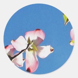 dogwood flower round sticker