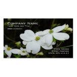 Dogwood Tree Flower Business Card