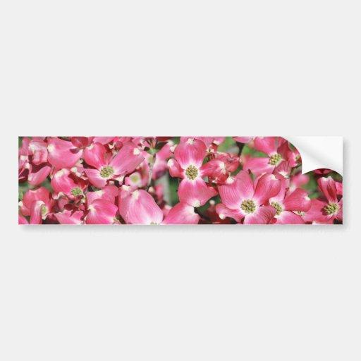 Dogwood Tree in Bloom Bumper Stickers