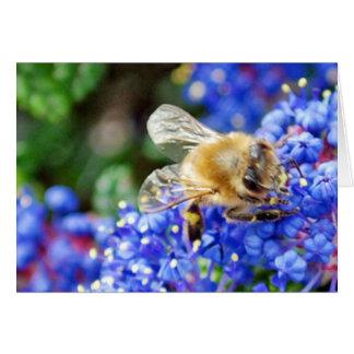 Dohr Street Bee Greeting Card