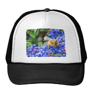 Dohr Street Bee Mesh Hat
