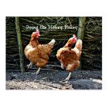 Doing the Hokey Pokey, The Hokey Pokey Chickens Postcard