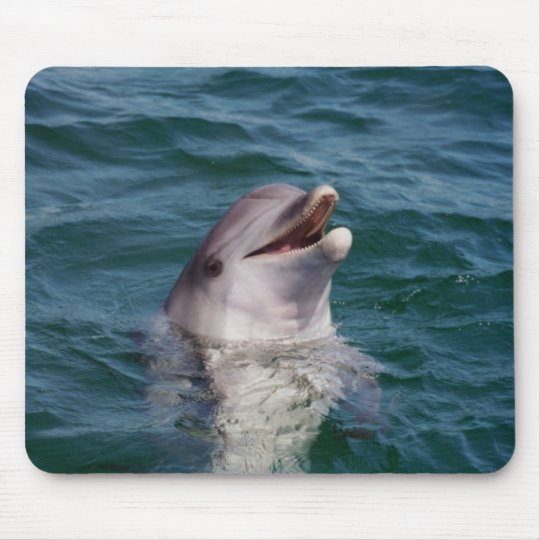 Dolfin Mouse Pad