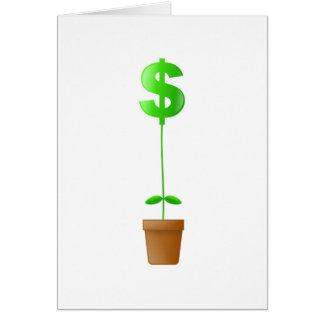 Dollar Plant Card