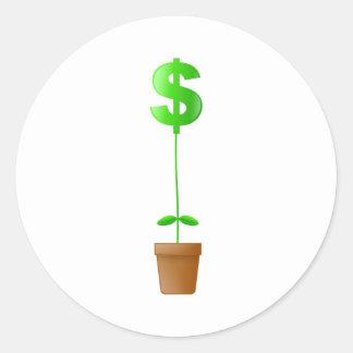 Dollar Plant Classic Round Sticker