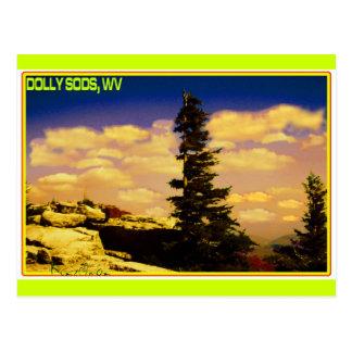 """DOLLY SODS"" ART POSTCARD"