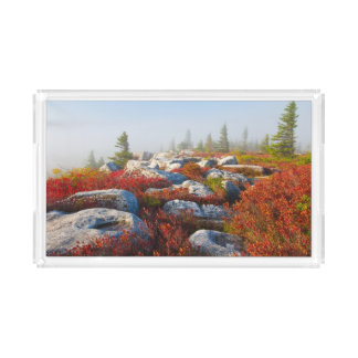 Dolly Sods Wilderness Fall Scenic With Fog Acrylic Tray