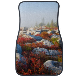 Dolly Sods Wilderness Fall Scenic With Fog Car Mat