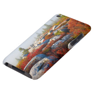 Dolly Sods Wilderness Fall Scenic With Fog iPod Touch Case-Mate Case