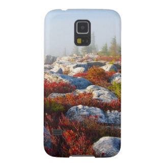 Dolly Sods Wilderness Fall Scenic With Fog Case For Galaxy S5