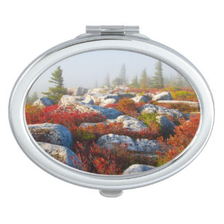 Dolly Sods Wilderness Fall Scenic With Fog Compact Mirrors