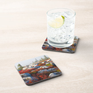 Dolly Sods Wilderness Fall Scenic With Fog Drink Coaster