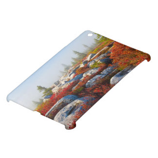 Dolly Sods Wilderness Fall Scenic With Fog Cover For The iPad Mini