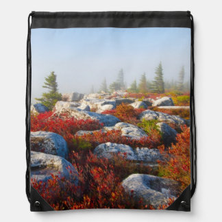 Dolly Sods Wilderness Fall Scenic With Fog Drawstring Bag
