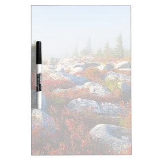 Dolly Sods Wilderness Fall Scenic With Fog Dry Erase Board