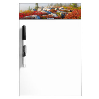Dolly Sods Wilderness Fall Scenic With Fog Dry-Erase Whiteboard