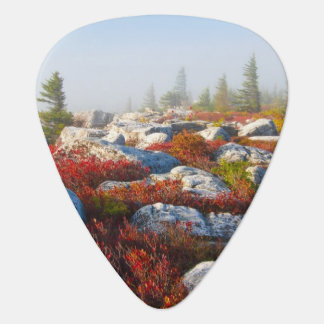 Dolly Sods Wilderness Fall Scenic With Fog Guitar Pick