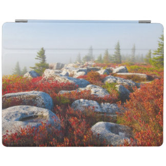 Dolly Sods Wilderness Fall Scenic With Fog iPad Cover