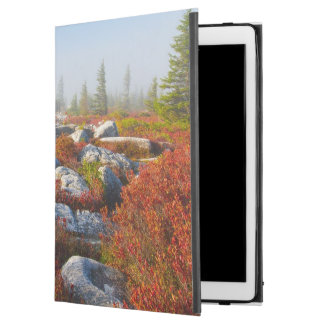 """Dolly Sods Wilderness Fall Scenic With Fog iPad Pro 12.9"""" Case"""