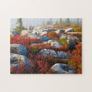 Dolly Sods Wilderness Fall Scenic With Fog Jigsaw Puzzle