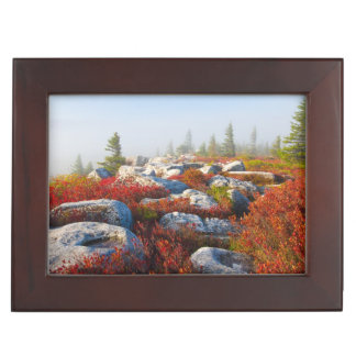 Dolly Sods Wilderness Fall Scenic With Fog Keepsake Box