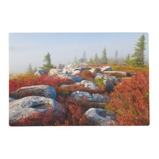 Dolly Sods Wilderness Fall Scenic With Fog Laminated Place Mat