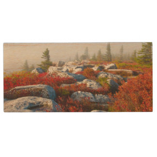 Dolly Sods Wilderness Fall Scenic With Fog Wood USB 2.0 Flash Drive
