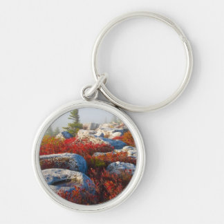 Dolly Sods Wilderness Fall Scenic With Fog Silver-Colored Round Key Ring