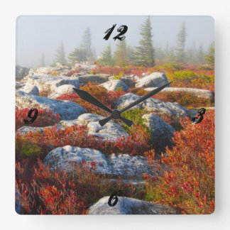 Dolly Sods Wilderness Fall Scenic With Fog Square Wall Clock