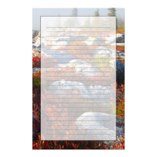 Dolly Sods Wilderness Fall Scenic With Fog Stationery
