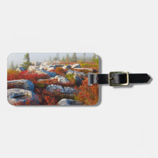 Dolly Sods Wilderness Fall Scenic With Fog Tag For Bags