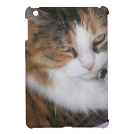 Dolly the Cat iPad Mini Covers