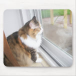 Dolly the Cat Looking out Window Mousepad