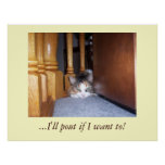Dolly  the Cat Pouting Poster