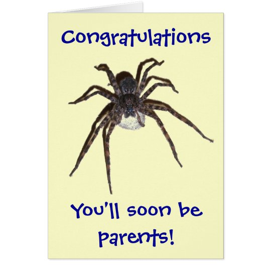 Dolomedes Congratulations Expectant Parents Card