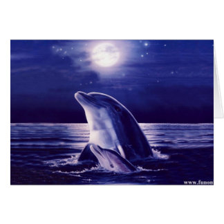 Dolphin and Baby Card