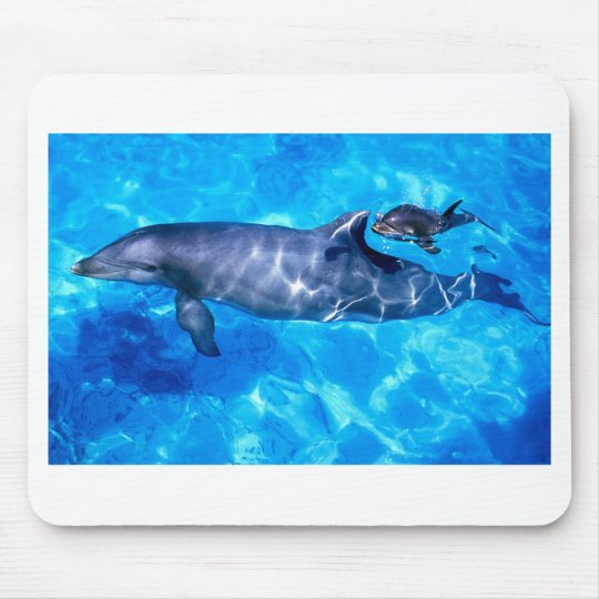 Dolphin and Baby Mouse Mat