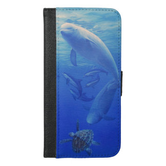 Dolphin and companions case