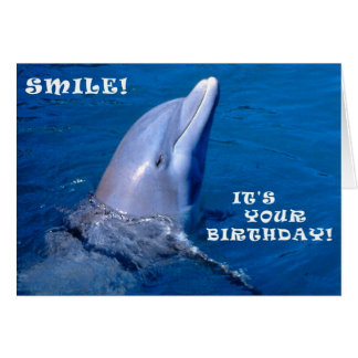 Dolphin birthday smile card