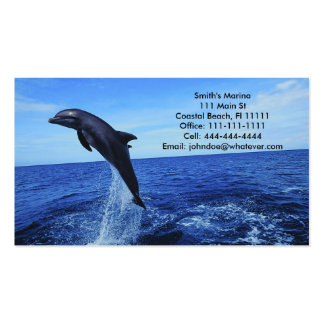 Dolphin Business-Personal Card Business Card Templates